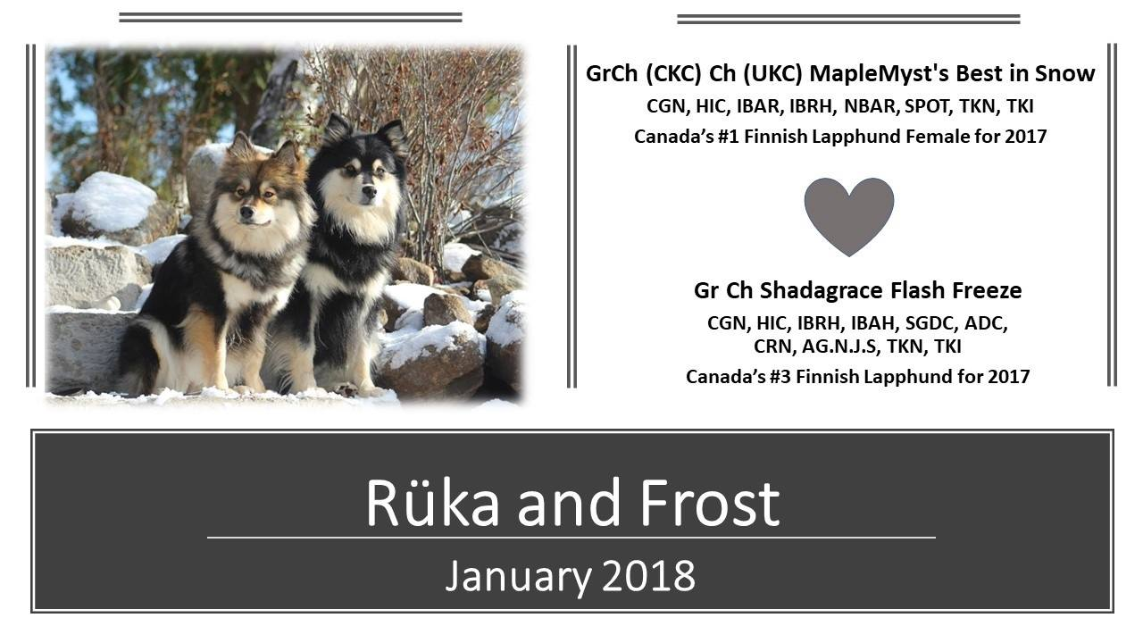 Ruka and Frost, champions already