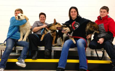 Maple Myst Students earn CKC Canine Good Neighbour CGN title.