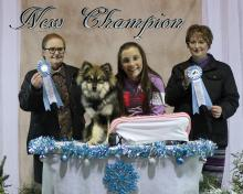 United Kennel Club champ!